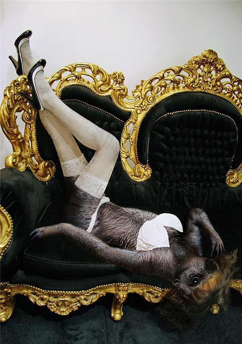 如此性感野兽!【有趣组图】_http://www.163z.com